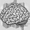 *Brain2*