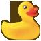 *Duck*