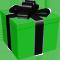 *Gift1*