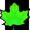 *Leaf1*