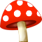 *MushroomR*