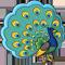 *Peacock*