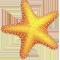 *StarfishY*