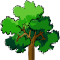 *Tree3*