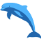 *Dolphin*