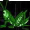 *Grasshopper*