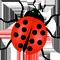 *Ladybug*