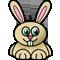 *Rabbit3*