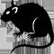 *Rat*