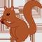 *Squirrel*