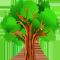 *Tree2*