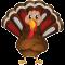 *Turkey*